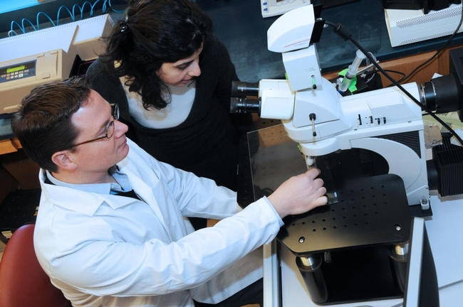 Study authors Kip Connor, Ph.D., and Lama Mulki, M.D., at the microscope in the Connor lab, Harvard Medical School. (Photo courtesy of Kip Connor)