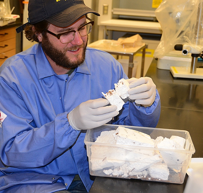 UC Davis doctoral student Trevor Fowles, shown here with his mealworms, won a $15,000 EPA grant for his project,