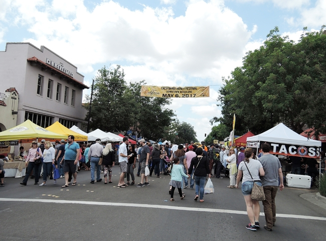 This was the scene at the inaugural California Honey Festival. The organizers expected a crowd of 3000, and were delighted when 20,000 showed up. (Photo by Kathy Keatley Garvey)