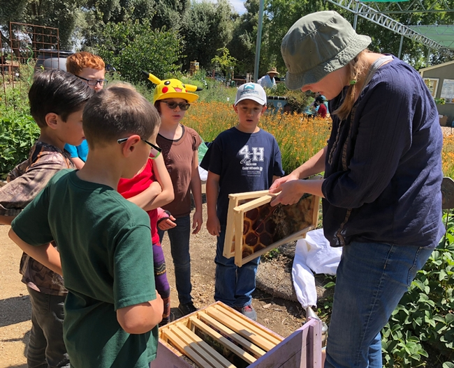 Postdoctoral scholar Laura Brutscher of the Elina Lastro Niño lab shows frames to the students from Amador County. (Photo by Kathy Keatley Garvey)