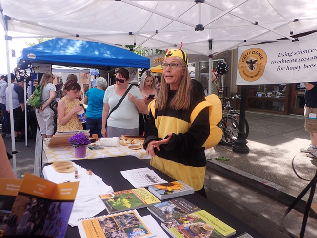 Wendy Mather, program manager of the California Master Beekeeper Program, talks to festival-goers about bees. (Photo by Kathy Keatley Garvey)