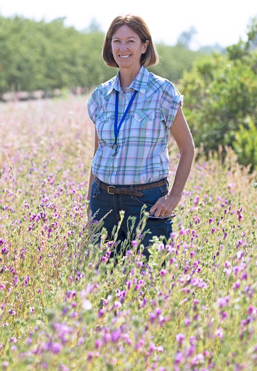 Cooperative Extension advisor Rachael Long next to hedgerows. (Photo by Evett Kilmartin)