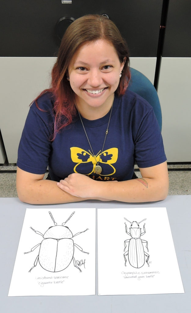Graphic artist/entomology student Karissa Merritt (Photo by Kathy Keatley Garvey)