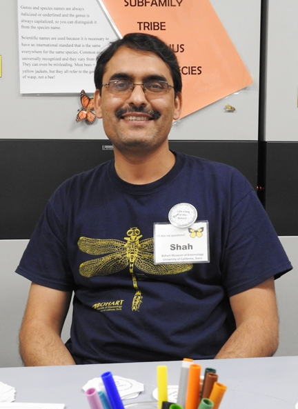 Entomologist Syed Fahad Shah is doing six-month research at the Bohart Museum of Entomology on  agriculturally important pests.  (Photo by Kathy Keatley Garvey)