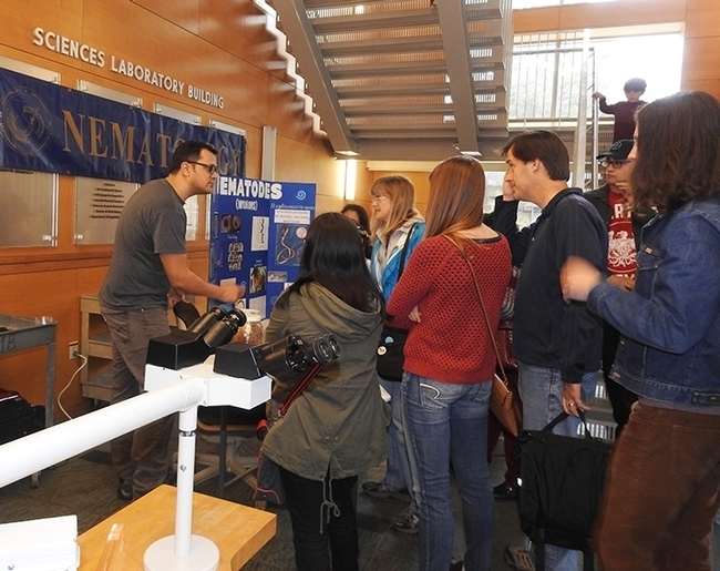 Doctoral student Chris Pagan talks about nematodes in the Sciences Laboratory Building on UC Davis Biodiversity Museum Day. (Photo by Kathy Keatley Garvey)