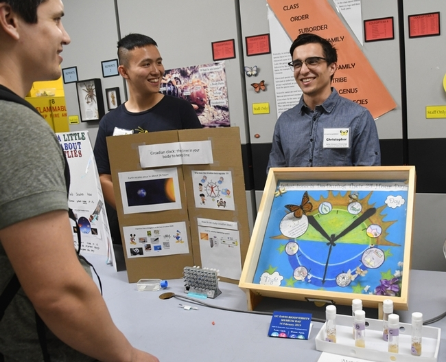 At last year's Bohart Museum open house on student research, graduate student Yao Cai (left) and undergraduate Christopher Ocoa, both of the Joanna Chiu lab, chatted with visitors about their fruit fly and monarch research. (Photo by Kathy Keatley Garvey)