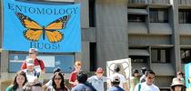 The Faculty Flash Talks, to place in 122 Briggs Hall at 4:10 p.m. on Feb. 26, will feature six scientists. This is an image from a UC Davis Picnic Day celebration. (Photo by Kathy Keatley Garvey) for Entomology & Nematology News Blog