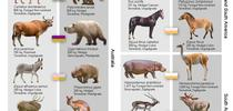 This graphic from the research article in PNAS illustrates introduced herbivores and nearest neighbors. for Entomology & Nematology News Blog