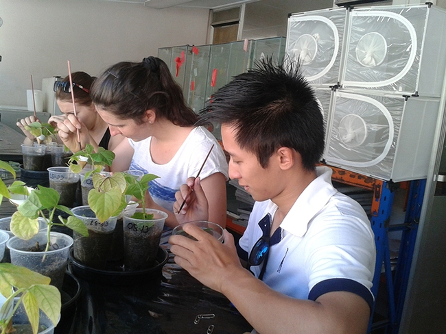 These students, from a Christian Nansen  class at the University of Western Australia, Perth, collect data as they learn about growing food. (Photo by Christian Nansen)