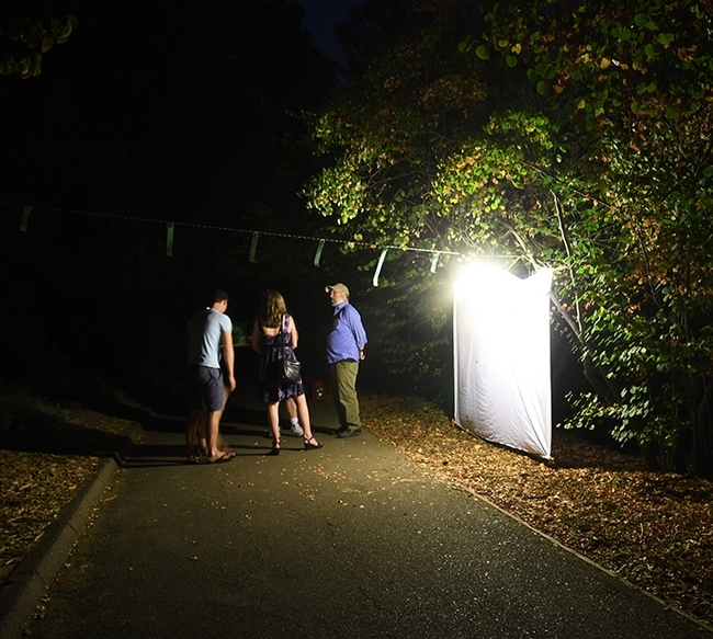 Black-lighting will be explained at the Bohart Museum's Virtual Moth Open House. Here