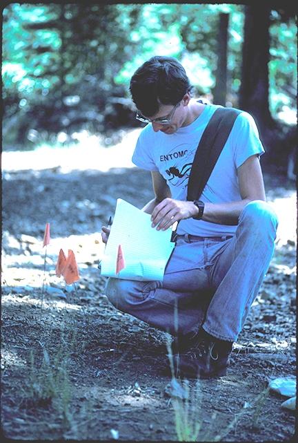 Jay Rosenheim, former UC Davis physics major, at UC Berkeley's Sagehen Creek Field Station, Truckee, in 1984.