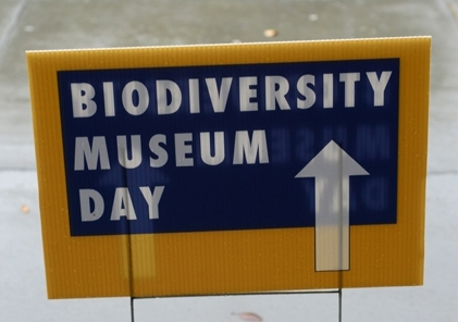 UC Davis Biodiversity Museum Day has expanded into a month.