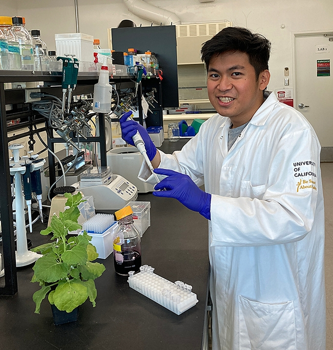 """Juan Amado """"Ado"""" Sales of the Shahid Siddique lab, UC Davis Department of Entomology and Nematology, has received a coveted summer fellowship from the UC Davis Innovation Institute for Food and Health."""