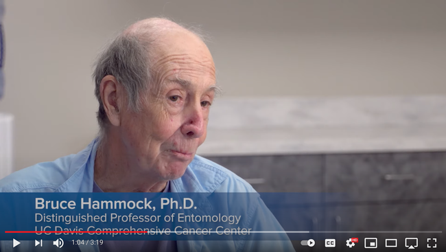 UC Davis distinguished professor Bruce Hammock,who holds a joint appointment with the Department of Entomology and Nematology and the UC Davis Comprehensive Cancer Center, discusses the project in this screen shot from the YouTube video.