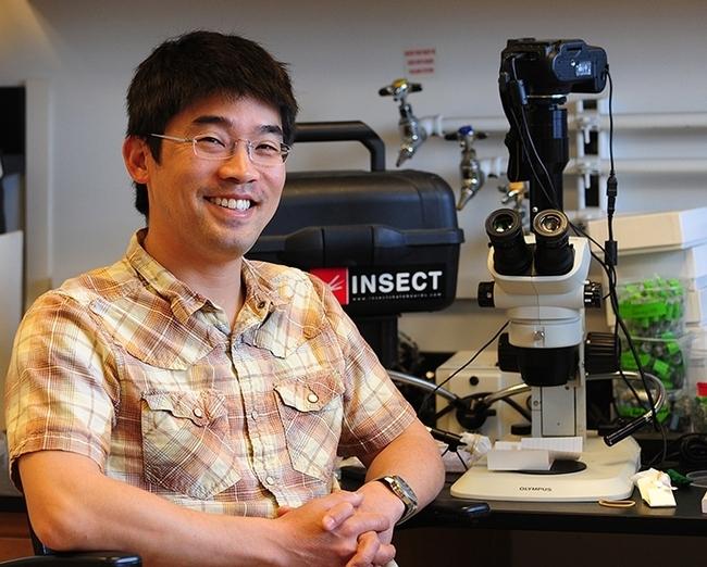 Professor Louie Yang in his research lab. (Photo by Kathy Keatley Garvey)