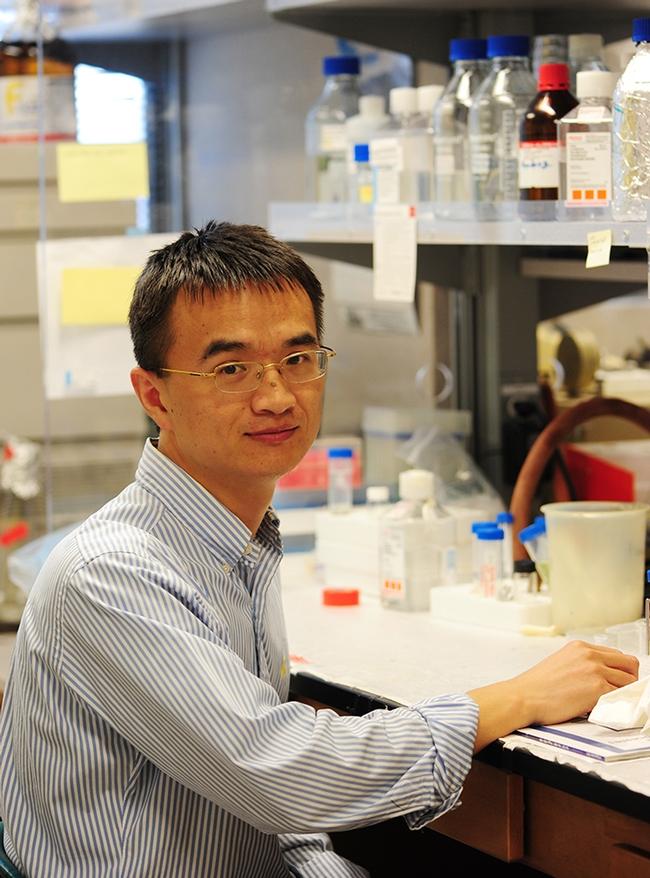 Hammock laboratory alumnus Guodong Zhang, associate professor in the University of Massachusetts' Department of Food Science, is the recipient of the