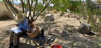 Making Notes for Native Garden at the Eastern Sierra Interagency Visitor Center Blog