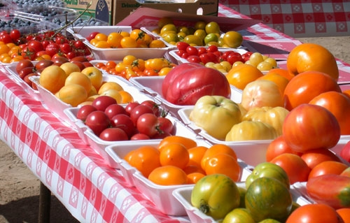 A wide variety of tomatoes can be grown in the garden.