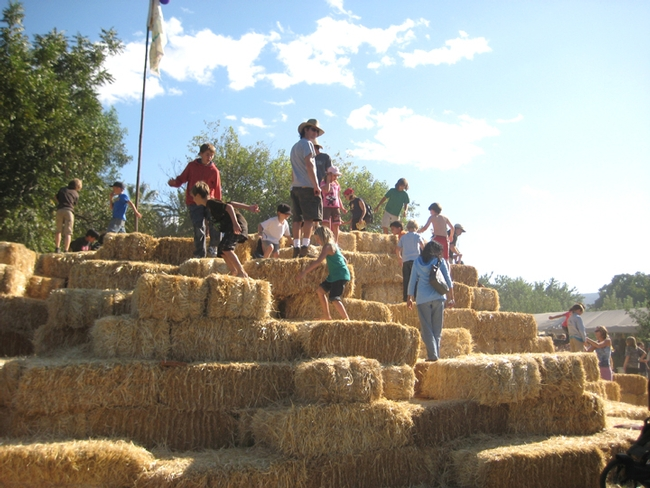 Hoes Down 09 hay bale hill