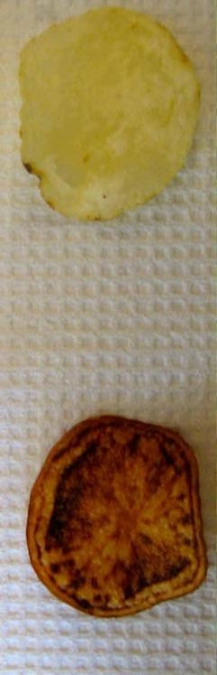 Photo shows two potato chips: one from a healthy tuber (top) and the other from an infected tuber.