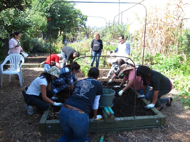 Grow LA Victory Garden class