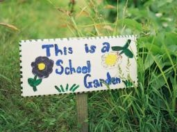 The Edible Schoolyard at Berkeley teaches essential life skills and supports academic learning through hands-on classes in a one-acre organic garden and kitchen classroom.