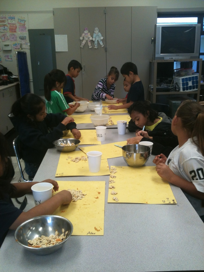 Students count pumpkin seeds as part of a math lesson.