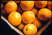 Los Angeles Unified School District has purchased Riverside County oranges over Florida citrus through its local food purchasing initiative.