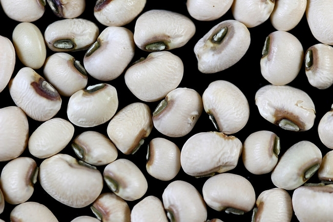Black-eyed peas are said to bring good luck in the New Year.