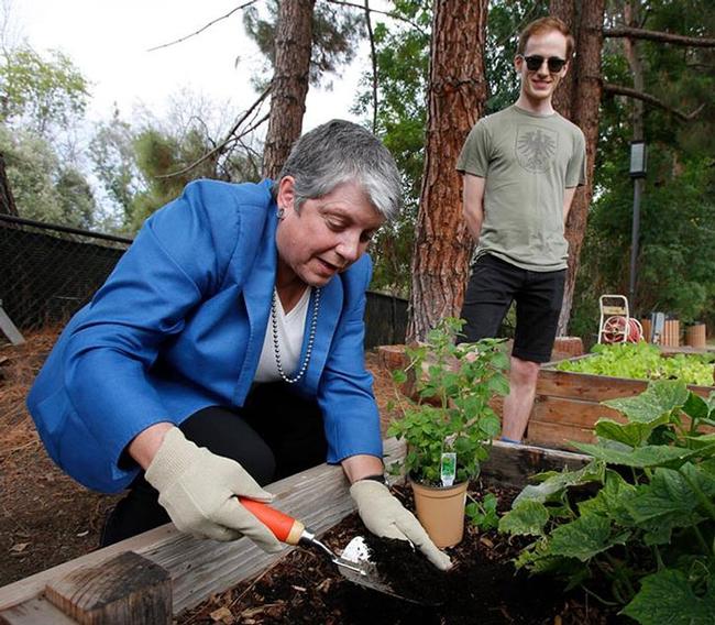 President Napolitano joins UCLA student Ian Davies in student-run garden.