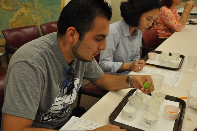 Participants taste avocados at UC Riverside.