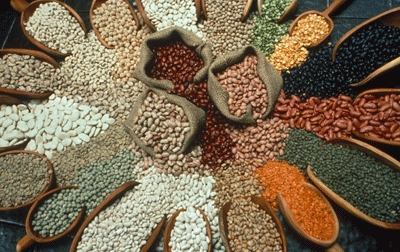 Beans are an inexpensive form of protein.