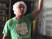 Farmer Rich Collins is passionate about endive production.
