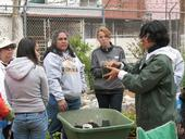 New gardeners learn the basics.