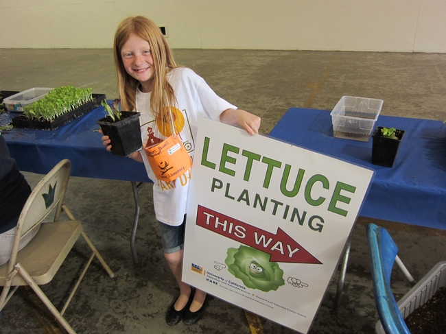 Lettuce planting engages and delights students.