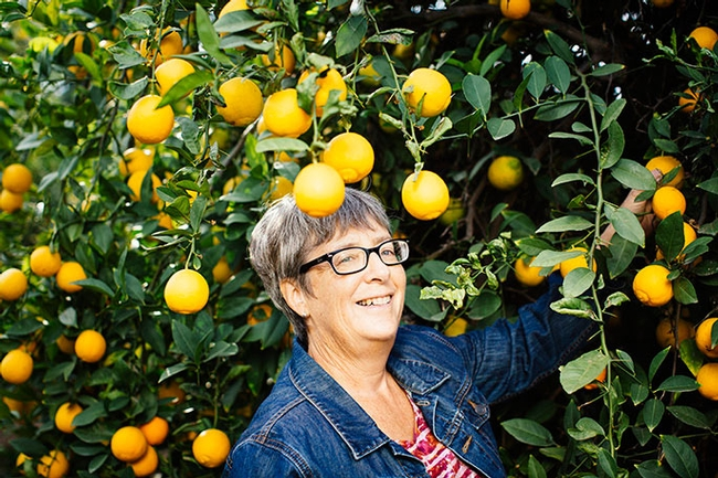 Tracy Kahn, a UC Agriculture and Natural Resources researcher, curates on of the world's largest collections of citrus varieties.