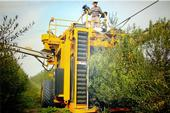 Mechanical harvesting at Corto Olive (Photo by Corto Olive)