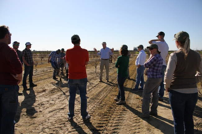 Kevin Day, center, discusses tree development in a young orchard.