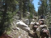 mules heading up a steep trail