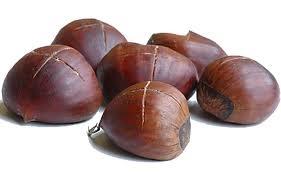chestnutx