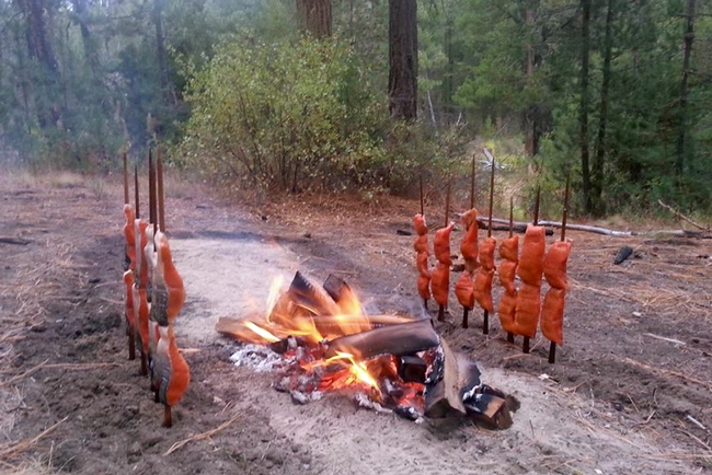 Two lines of salmon skewered on wooden poles line opposite sides of a wood fire.