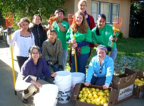 Harvesting team.