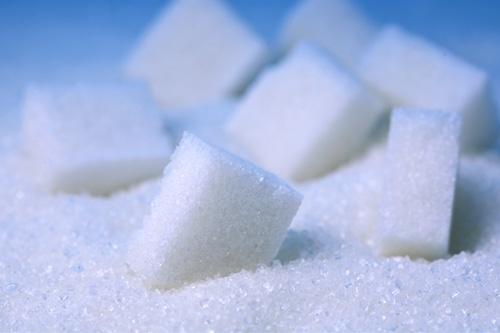 sugar 500x333