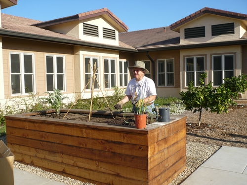 Raised garden beds allow elderly residents to garden without bending over.
