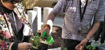 Eden Housing residents are able learn about nutrition, food safety and gardening concurrently at their living facilities. for Food Blog Blog