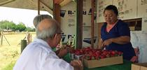 Strawberries sold at farm stands are typically sweeter and more flavorful than varieties sold in stores. for Food Blog Blog