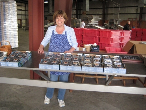 Gayle Willems at the Berry Lady blueberry stand, which sits inside the farm's packing house.