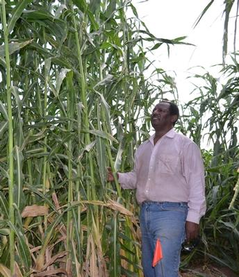 Former goat herder's crop research promotes prosperity for Imperial Valley farmers