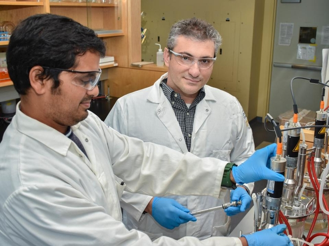 Ilias Tagkopoulos, right, in his lab at the UC Davis Genome Center with research specialist Navneet Rai in 2016. Tagkopoulos, whose work bridges computer science and biology, will lead a new institute for artificial intelligence in food systems supported by the U.S. Department of Agriculture and National Science Foundation. (UC Davis College of Engineering)