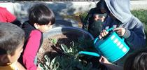 A group of kids water their school garden. for Food Blog Blog